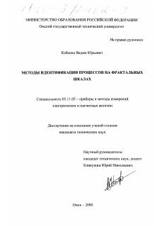 Методы идентификации процессов на фрактальных шкалах диссертация  Диссертация по приборостроению метрологии и информационно измерительным приборам и системам на тему Методы